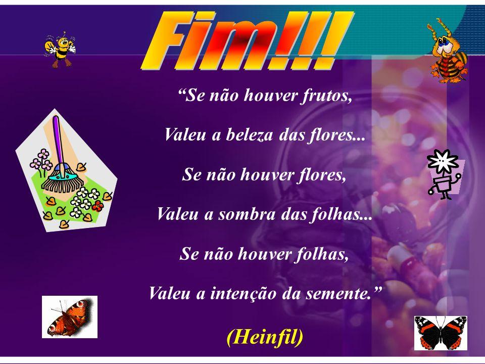Fim!!! (Heinfil) Se não houver frutos, Valeu a beleza das flores...