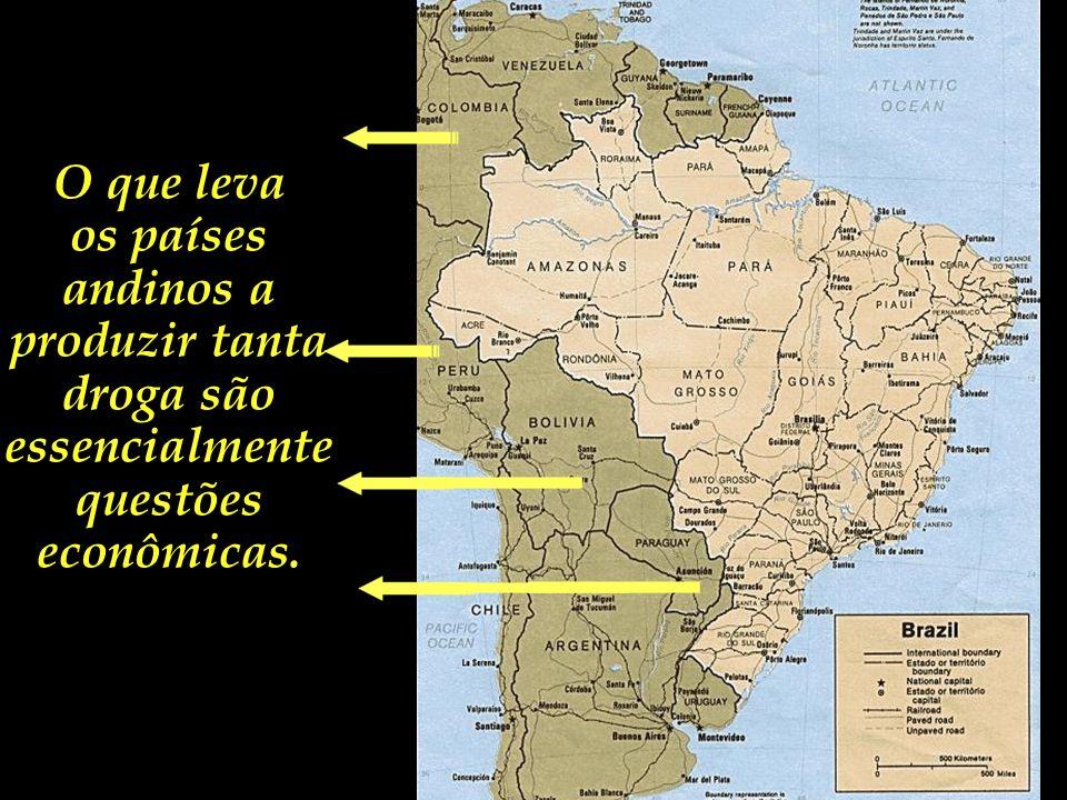 O que leva os países andinos a produzir tanta droga são essencialmente questões econômicas.