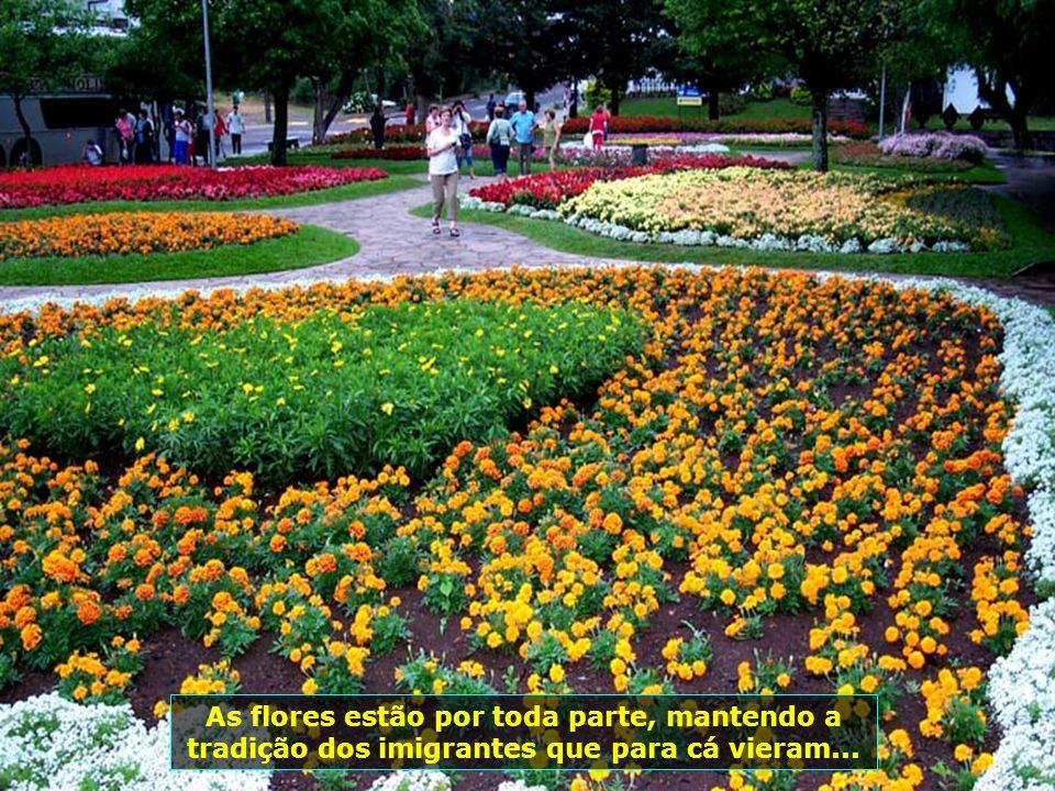 As flores estão por toda parte, mantendo a tradição dos imigrantes que para cá vieram...
