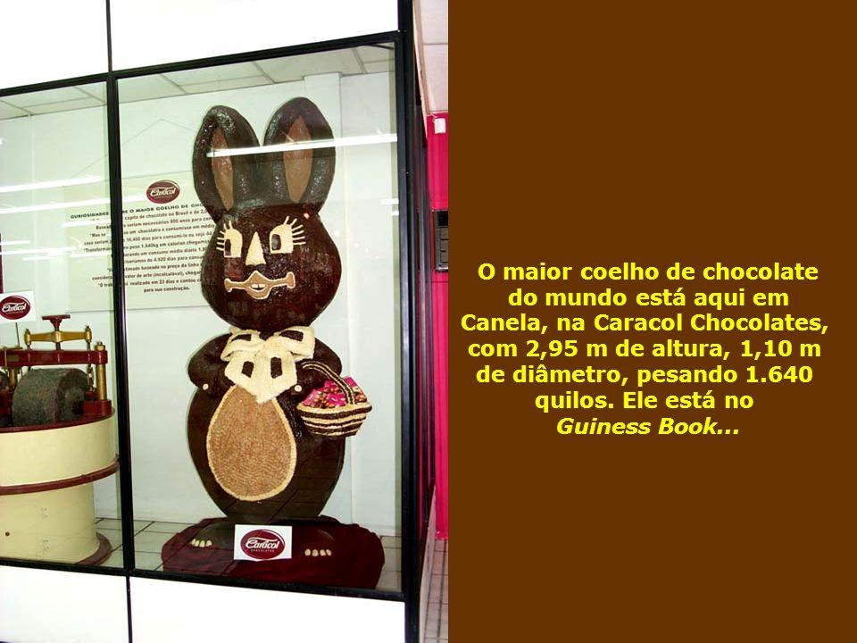 O maior coelho de chocolate Canela, na Caracol Chocolates,