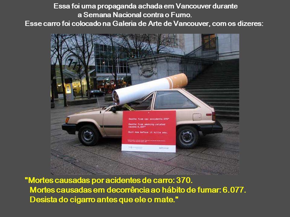 Mortes causadas por acidentes de carro: 370.