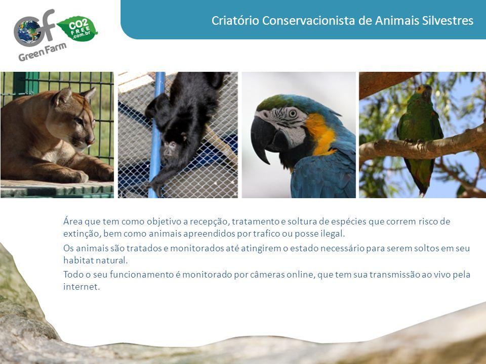 Criatório Conservacionista de Animais Silvestres