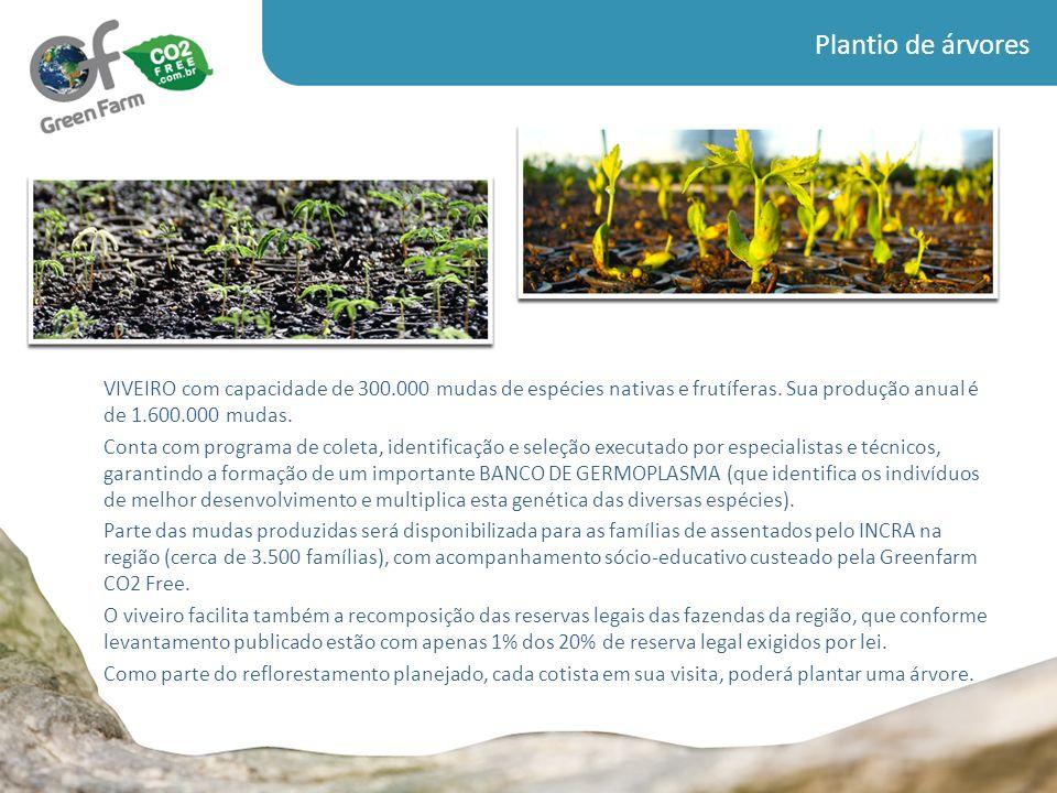 Plantio de árvores VIVEIRO com capacidade de 300.000 mudas de espécies nativas e frutíferas. Sua produção anual é de 1.600.000 mudas.