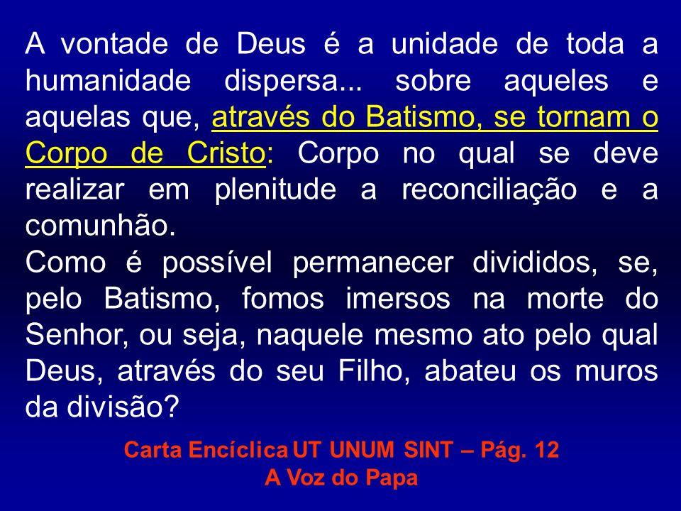 Carta Encíclica UT UNUM SINT – Pág. 12