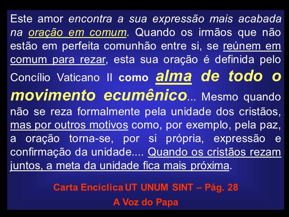 Carta Encíclica UT UNUM SINT – Pág. 28
