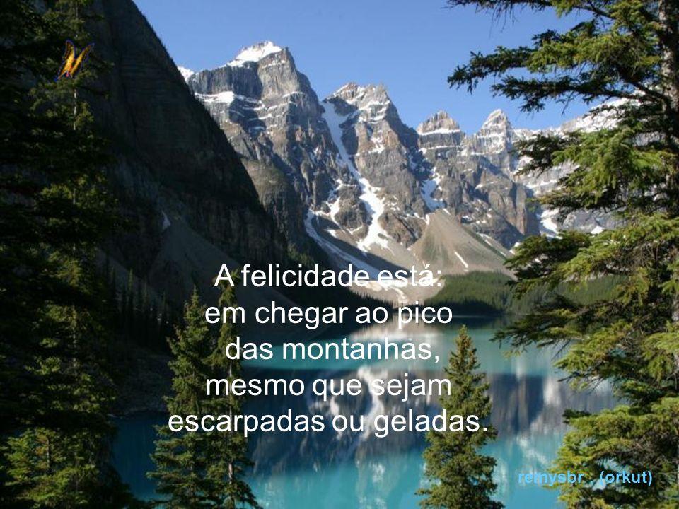 A felicidade está: em chegar ao pico das montanhas, mesmo que sejam
