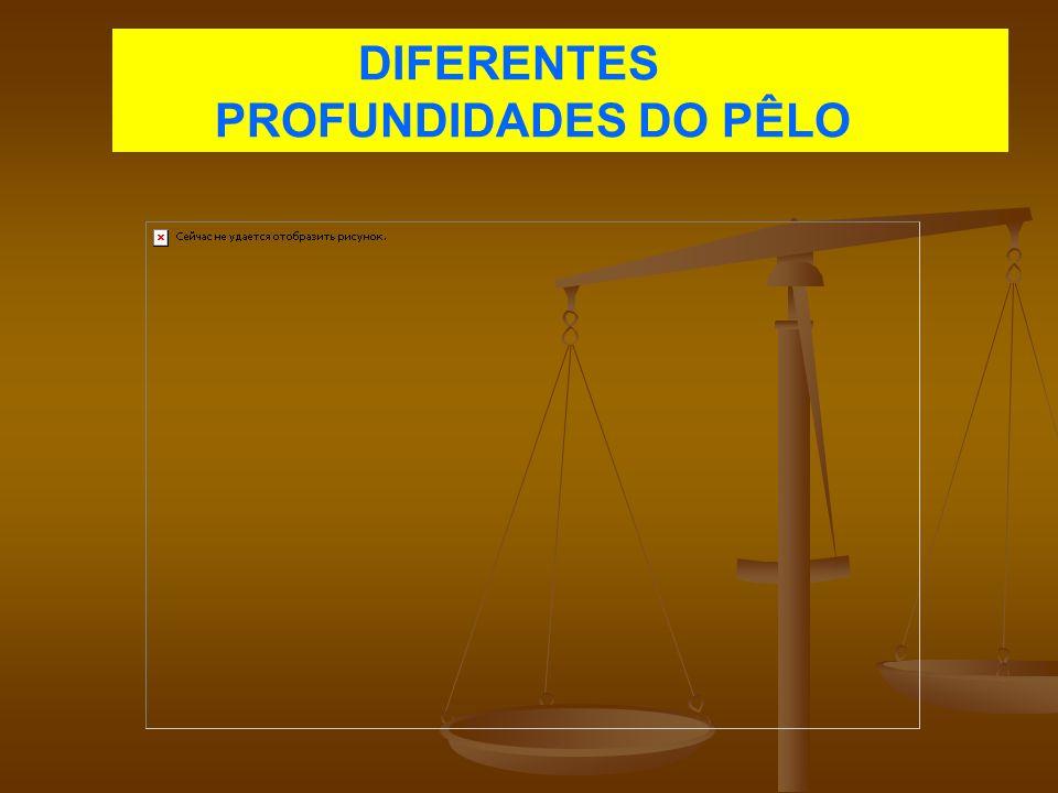 DIFERENTES PROFUNDIDADES DO PÊLO