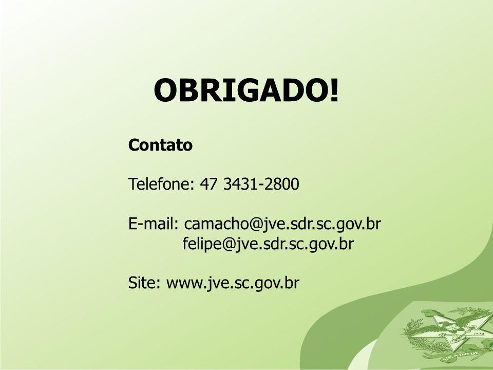 OBRIGADO! Telefone: 47 3431-2800 E-mail: camacho@jve.sdr.sc.gov.br