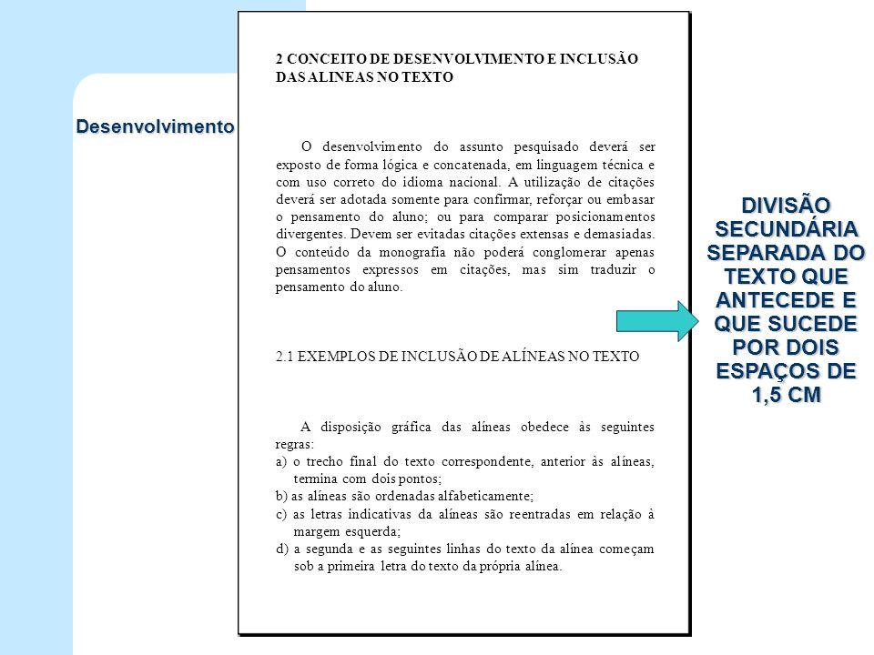 2 CONCEITO DE DESENVOLVIMENTO E INCLUSÃO DAS ALINEAS NO TEXTO