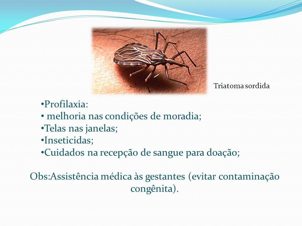 Obs:Assistência médica às gestantes (evitar contaminação congênita).