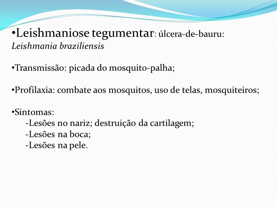 Leishmaniose tegumentar: úlcera-de-bauru: Leishmania braziliensis