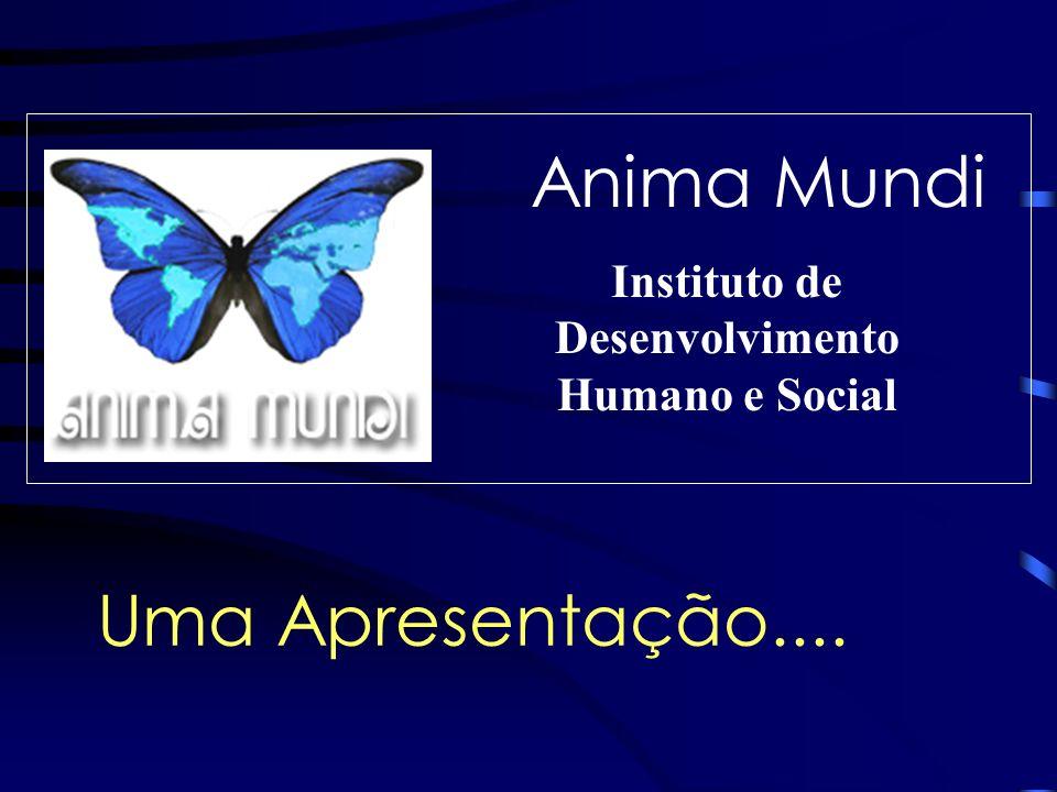 Instituto de Desenvolvimento Humano e Social