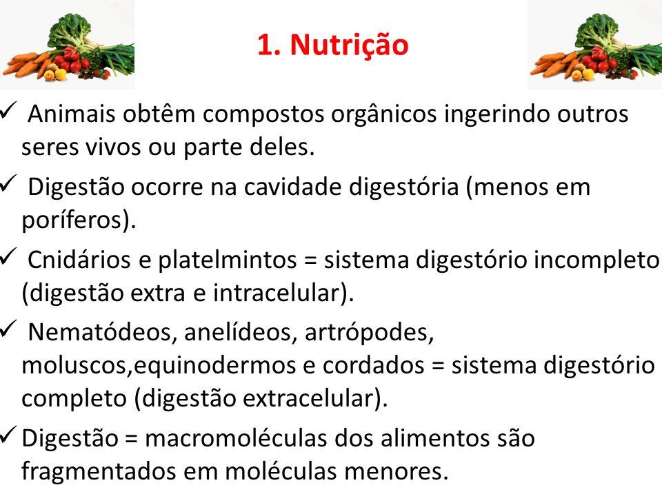 1. Nutrição Animais obtêm compostos orgânicos ingerindo outros seres vivos ou parte deles.