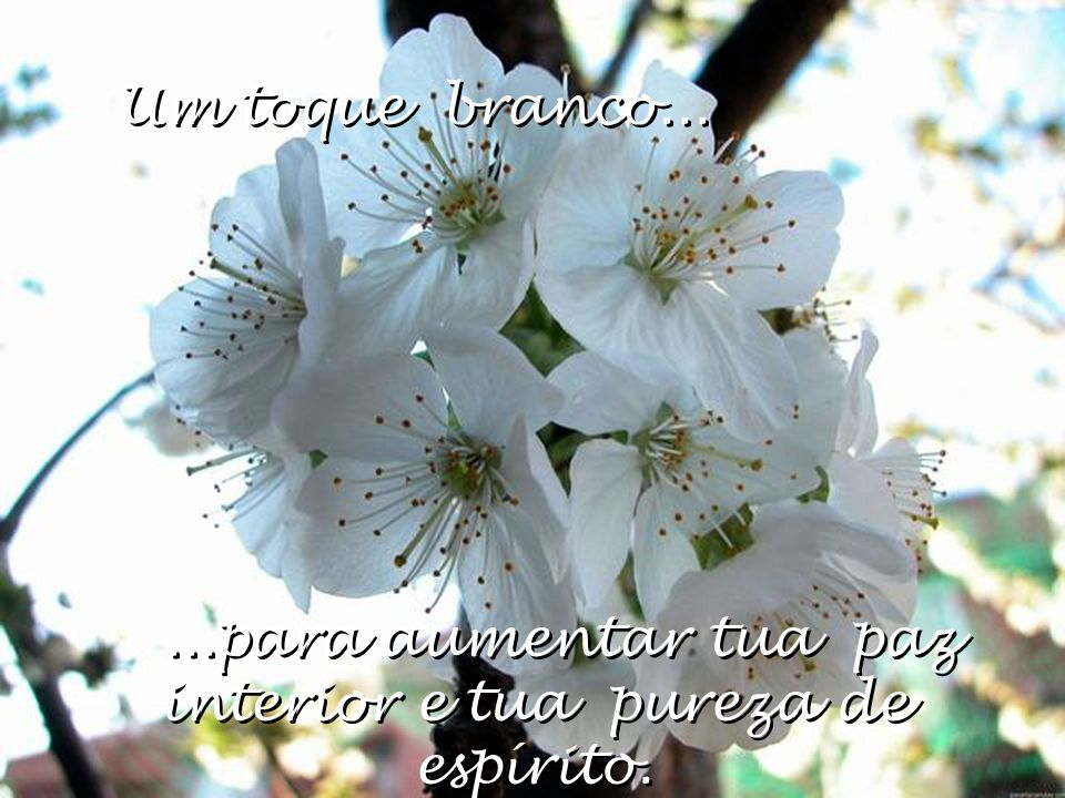 ...para aumentar tua paz interior e tua pureza de espírito.