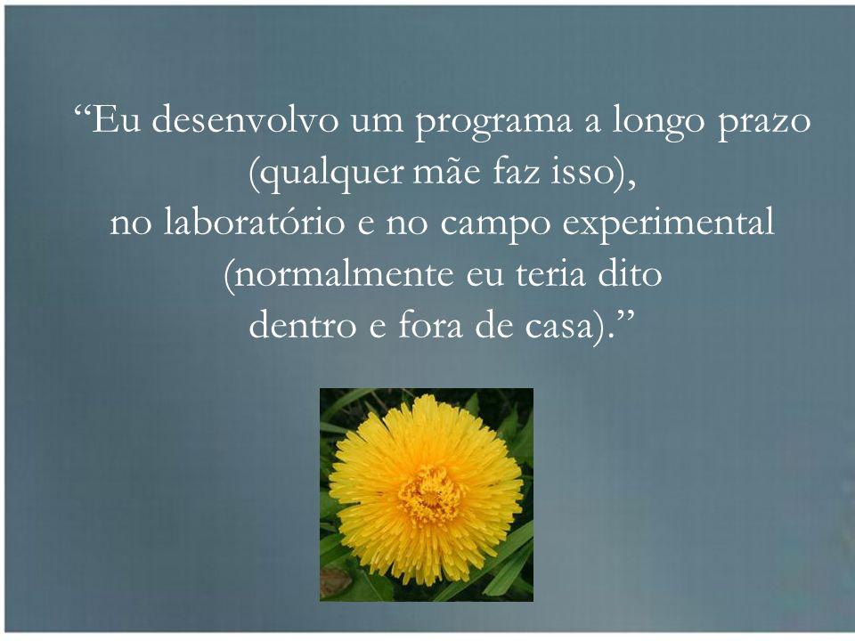 Eu desenvolvo um programa a longo prazo (qualquer mãe faz isso), no laboratório e no campo experimental (normalmente eu teria dito dentro e fora de casa).