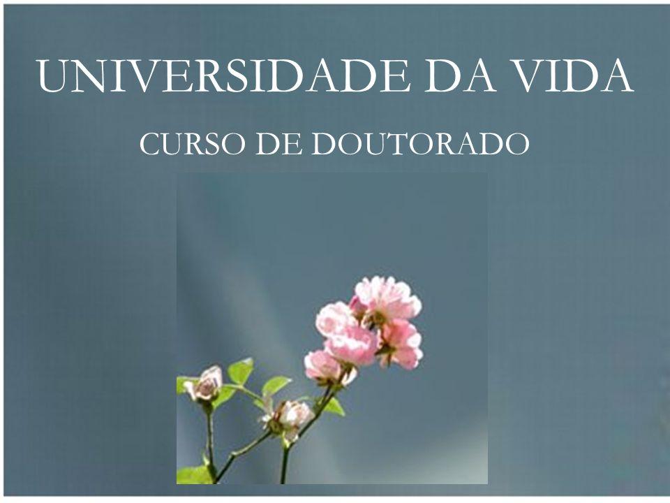 UNIVERSIDADE DA VIDA CURSO DE DOUTORADO