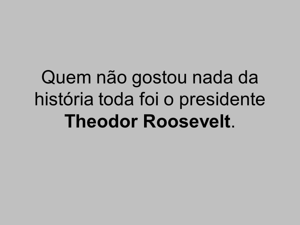 Quem não gostou nada da história toda foi o presidente Theodor Roosevelt.