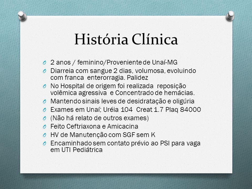 História Clínica 2 anos / feminino/Proveniente de Unaí-MG
