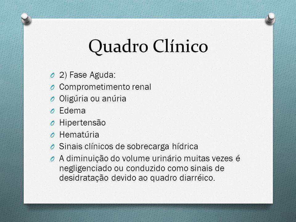 Quadro Clínico 2) Fase Aguda: Comprometimento renal Oligúria ou anúria