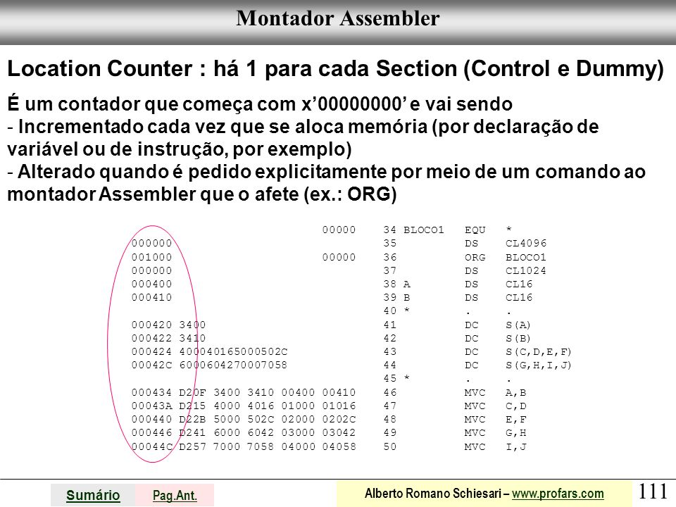 Location Counter : há 1 para cada Section (Control e Dummy)