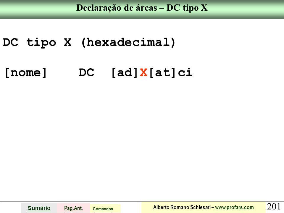 Declaração de áreas – DC tipo X