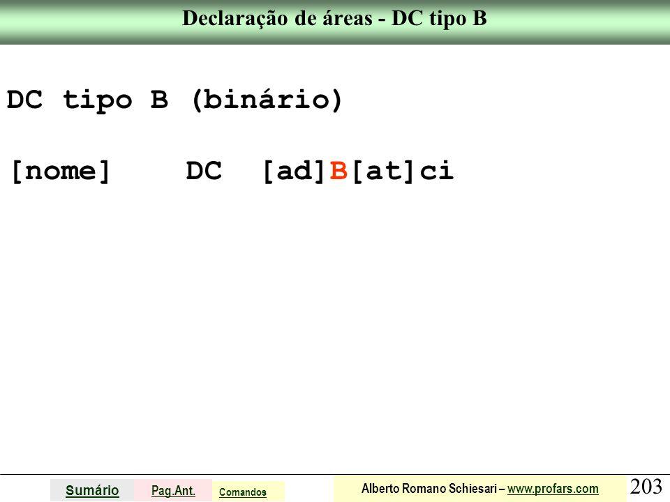 Declaração de áreas - DC tipo B