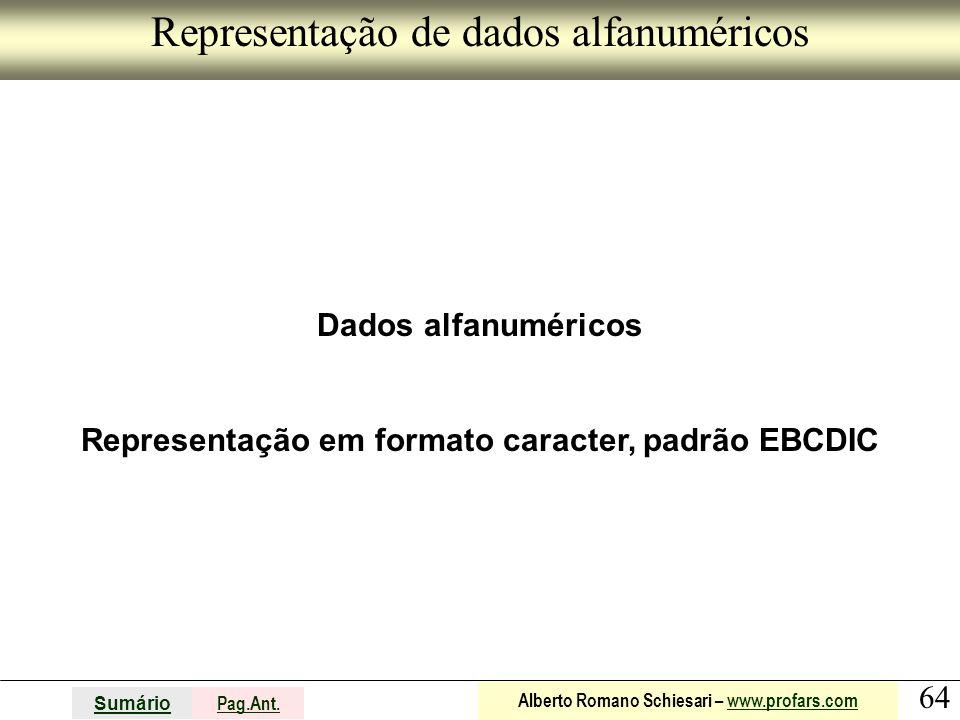 Representação de dados alfanuméricos