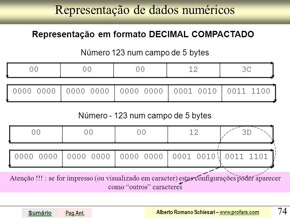 Representação de dados numéricos