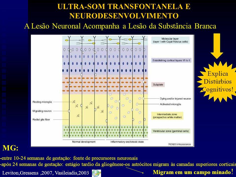 ULTRA-SOM TRANSFONTANELA E NEURODESENVOLVIMENTO