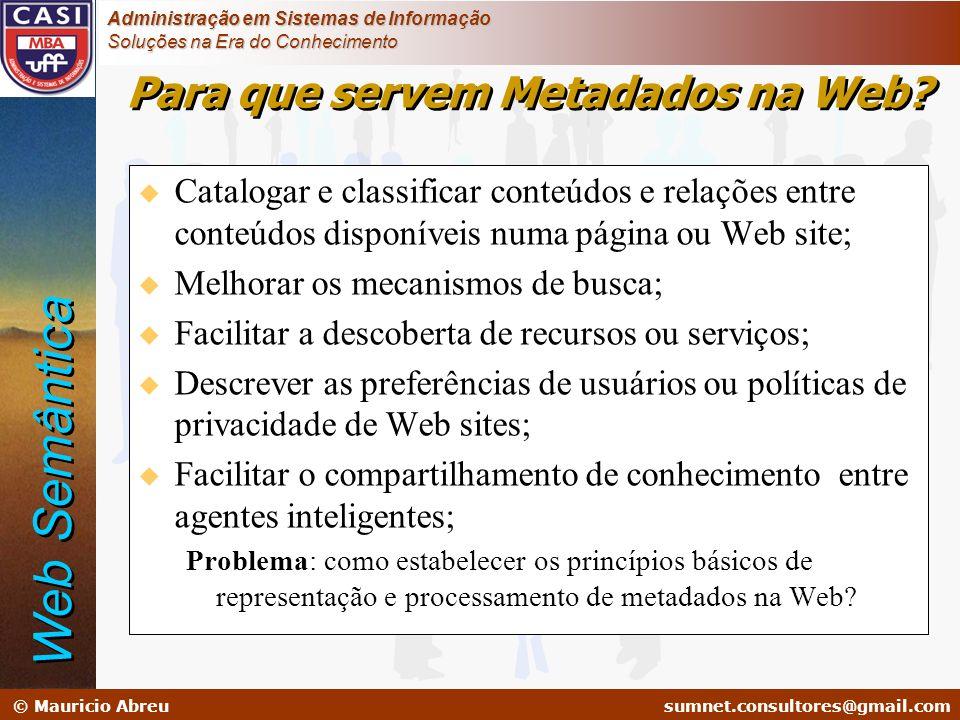 Para que servem Metadados na Web