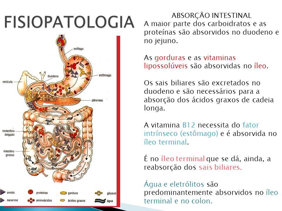 FISIOPATOLOGIA ABSORÇÃO INTESTINAL