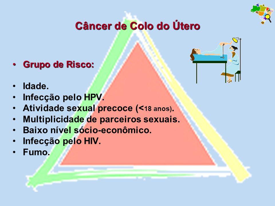 Câncer de Colo do Útero Grupo de Risco: Idade. Infecção pelo HPV.