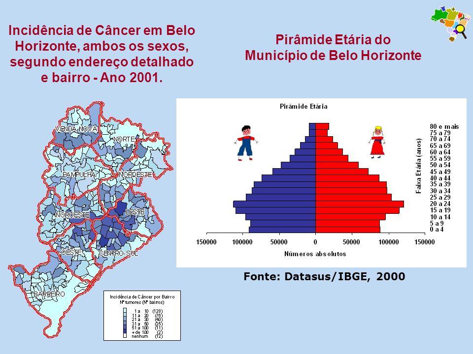 Pirâmide Etária do Município de Belo Horizonte