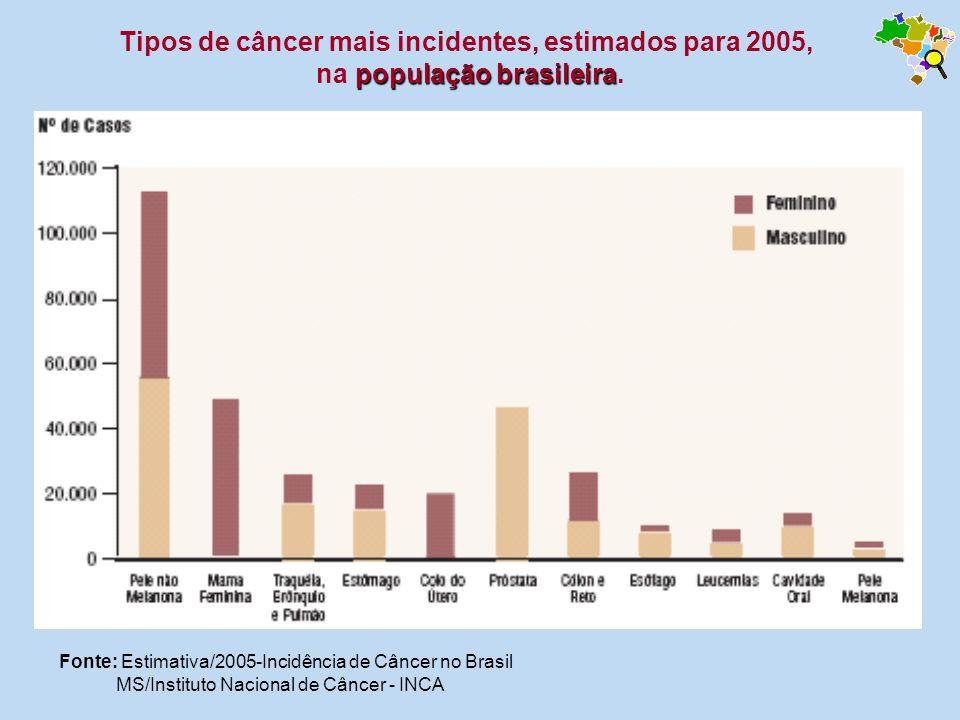 Tipos de câncer mais incidentes, estimados para 2005, na população brasileira.