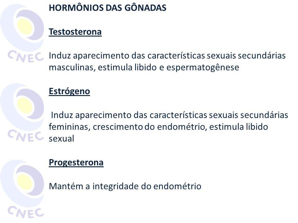 HORMÔNIOS DAS GÔNADAS Testosterona. Induz aparecimento das características sexuais secundárias masculinas, estimula libido e espermatogênese.