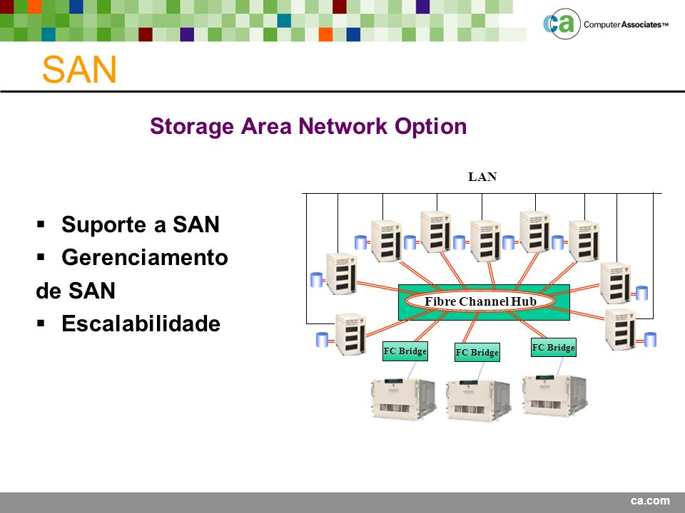 Storage Area Network Option