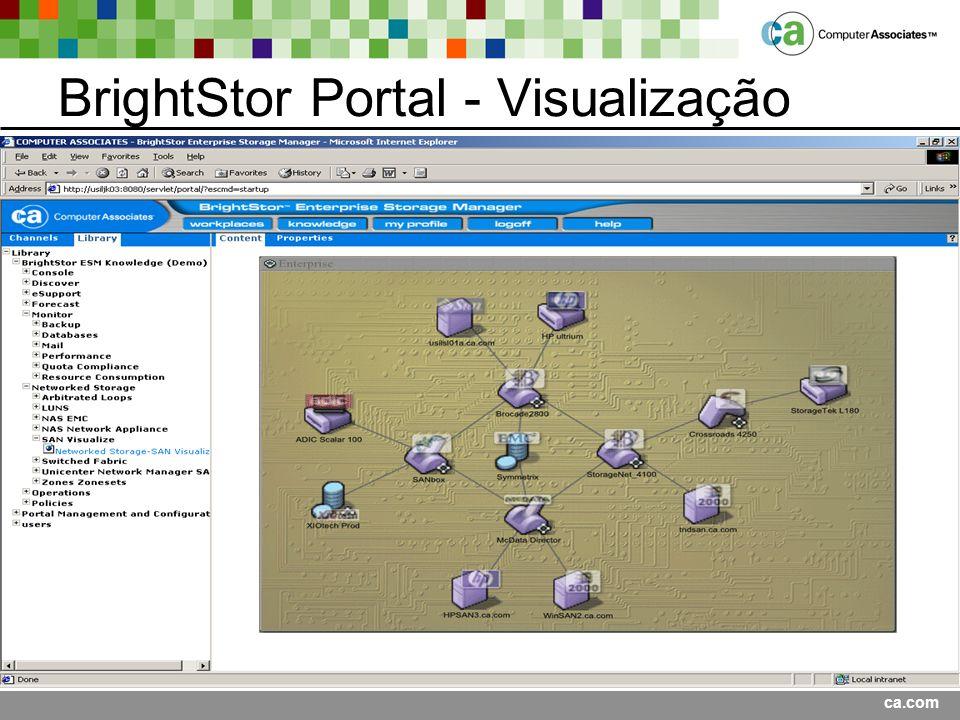 BrightStor Portal - Visualização