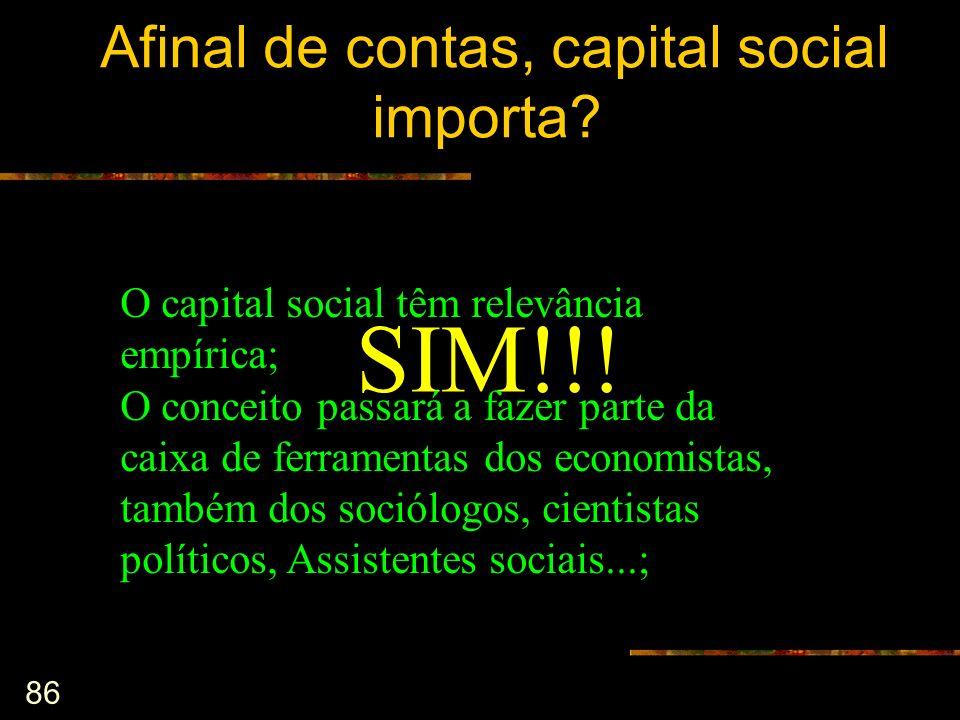 Afinal de contas, capital social importa