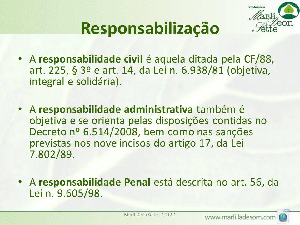 Responsabilização A responsabilidade civil é aquela ditada pela CF/88, art. 225, § 3º e art. 14, da Lei n. 6.938/81 (objetiva, integral e solidária).