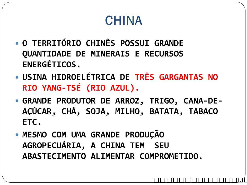 CHINA O TERRITÓRIO CHINÊS POSSUI GRANDE QUANTIDADE DE MINERAIS E RECURSOS ENERGÉTICOS.