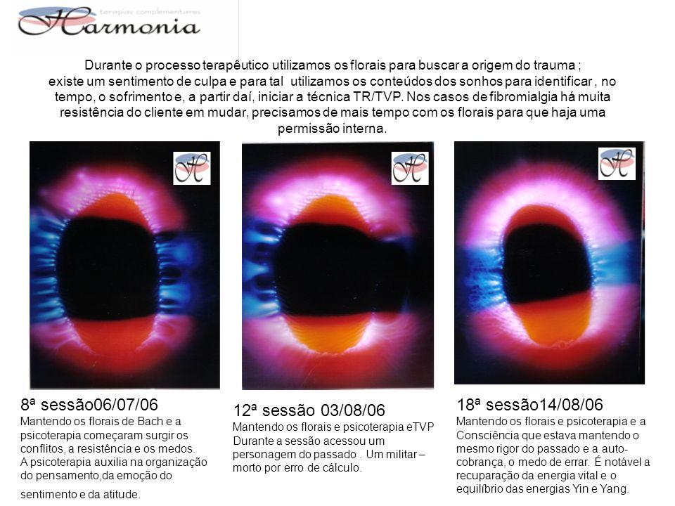 8ª sessão06/07/06 18ª sessão14/08/06 12ª sessão 03/08/06