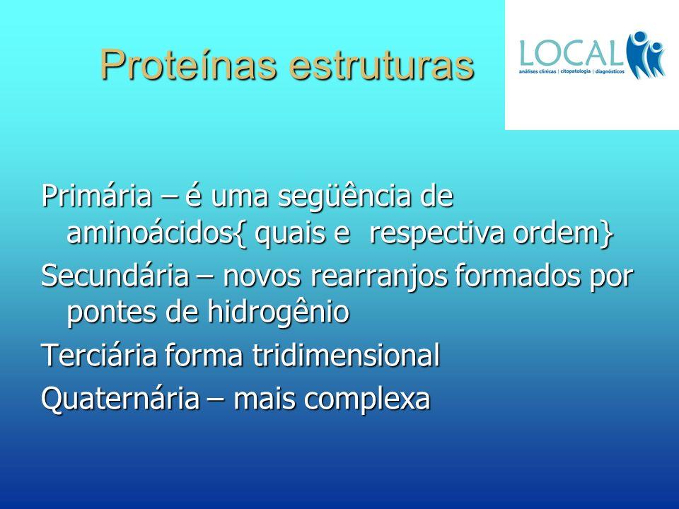 Proteínas estruturas Primária – é uma següência de aminoácidos{ quais e respectiva ordem}