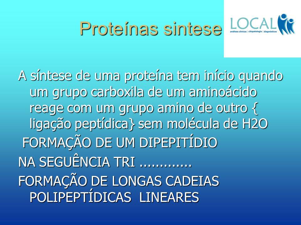 Proteínas sintese