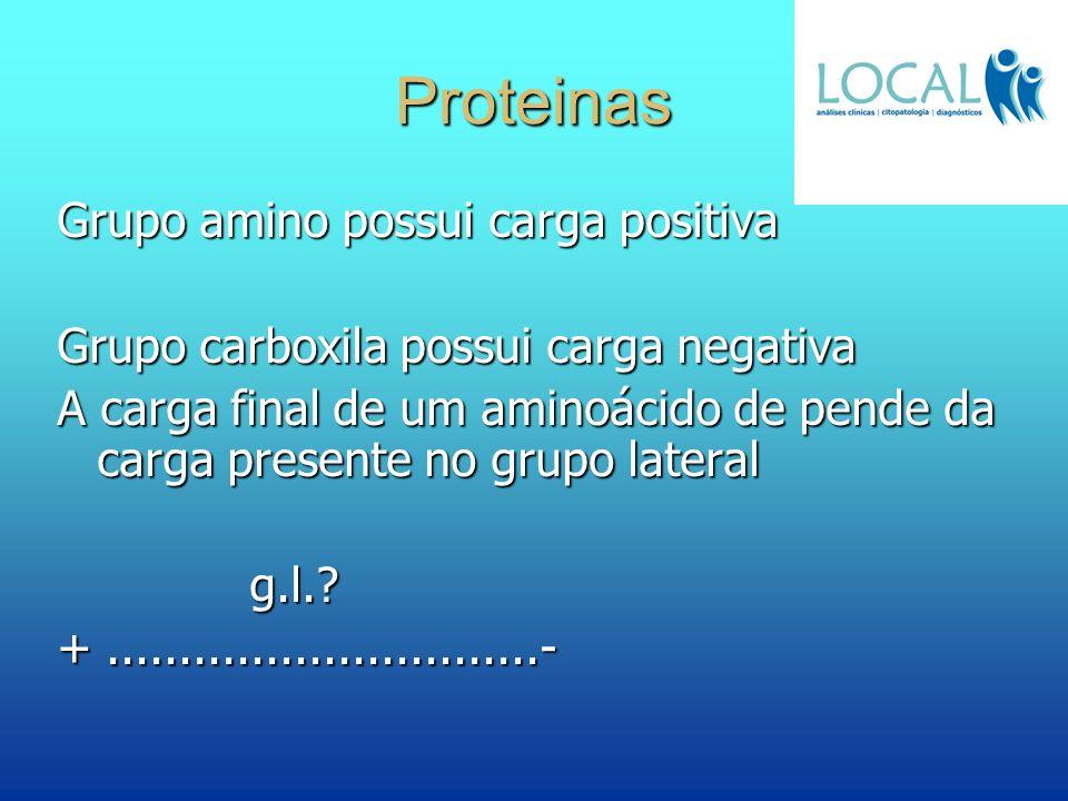 Proteinas Grupo amino possui carga positiva