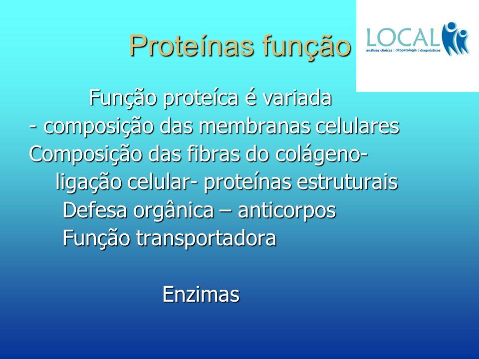 Proteínas função Função proteíca é variada