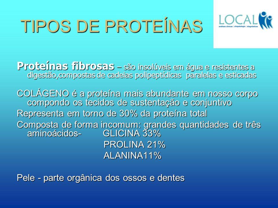 TIPOS DE PROTEÍNAS Proteínas fibrosas – são insolúveis em água e resistentes a digestão,compostas de cadeias polipeptídicas paralelas e esticadas.