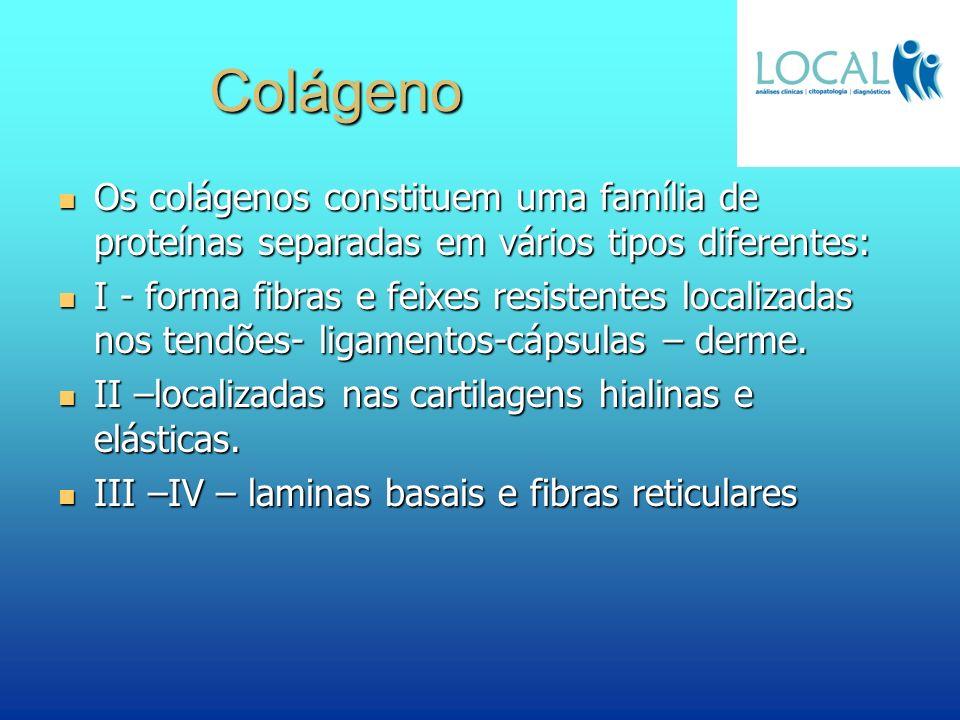 Colágeno Os colágenos constituem uma família de proteínas separadas em vários tipos diferentes: