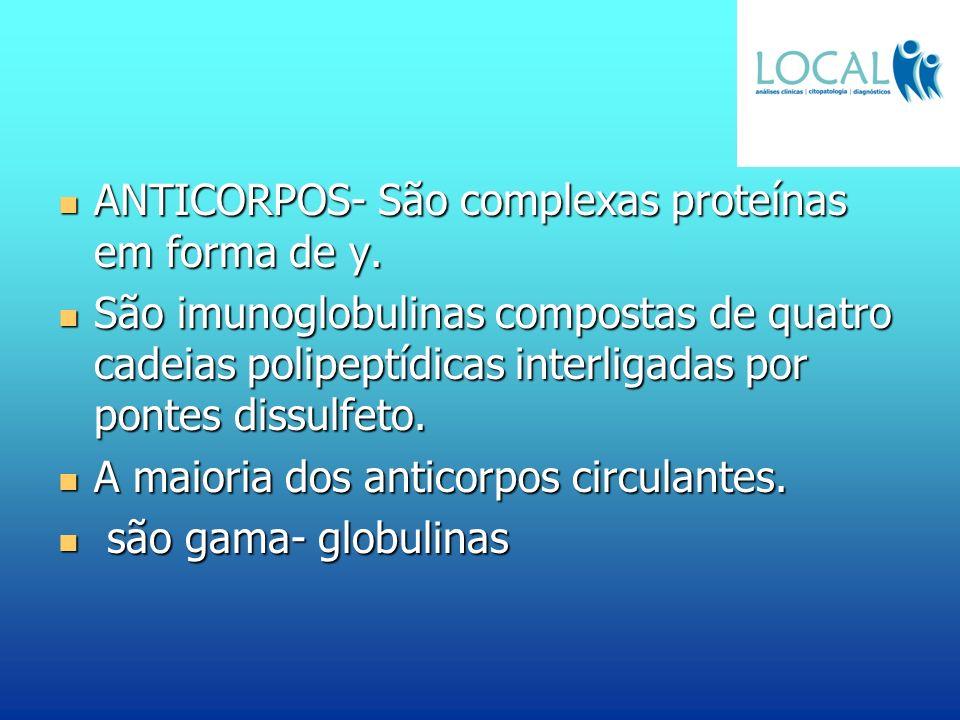 ANTICORPOS- São complexas proteínas em forma de y.