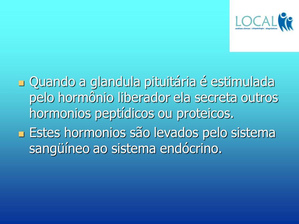 Quando a glandula pituitária é estimulada pelo hormônio liberador ela secreta outros hormonios peptídicos ou proteicos.