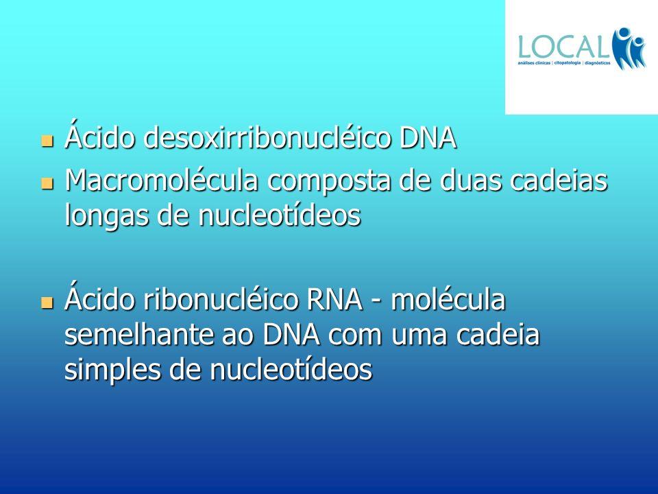 Ácido desoxirribonucléico DNA